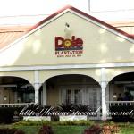 ドールプラテーション(dole-plantation)